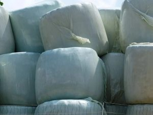 67 300x225 - The Advantages of Using Silage Plastic