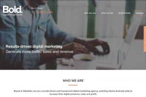 28 300x199 - The Importance of Professional Web Design