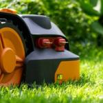 Article 1 150x150 - Hiring a Professional Garden Maintenance Service