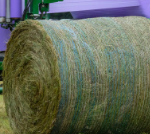 Article 52 150x134 - Advantages And Disadvantages Of Producing Baling Hays And Net Wrap