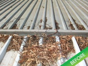 35 300x225 - Gutter Guard Adelaide - Why Choose Gutter Guards in Adelaide