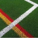 17 150x150 - Should You Consider Artificial Grass?